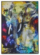 Colour Elephant